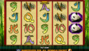 Darmowa gra hazardowa 100 Pandas bez rejestracji
