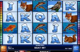 Darmowa gra hazardowa nie wymagająca depozytu Alaska Wild