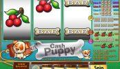 Darmowy automat do gier Cash Puppy. Bez depozytu
