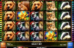 Zagraj na darmowym automacie Golden Acorn