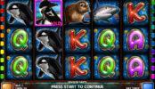 Automat Penguin Party online