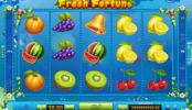 Zdjęcie z automatu do gier online dla zabawy Fresh Fortune