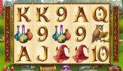 Zagraj na maszynie do gier online Wild Wizards firmy RTG