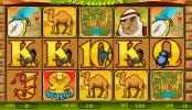 Imagine din Desert Treasure joc de noroc gratis online