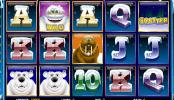 poza jocului gratis online cu aparate Polar Riches