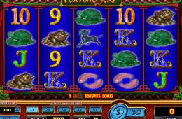 Poza jocului gratis online cu aparate Fortune 8 Cat