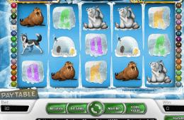 Joc de păcănele gratis fără depunere Icy Wonders