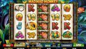 Joc de păcănele gratis online Mad Mad Monkey