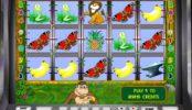 Joc de păcănele online Crazy Monkey