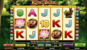 Joc de păcănele gratis online King Tiger