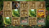 Joc cu aparate online Untamed Bengal Tiger