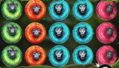7 Monkeys joc de păcănele fără înregistrare