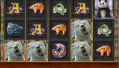 Joc de păcănele online fără descărcare Bear Mountain