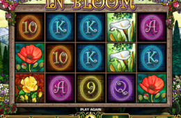 Joc de păcănele gratis fără descărcare In Bloom