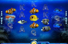 Joc de păcănele gratis online Pacific Paradise