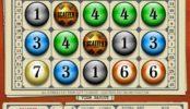 Joc de cazino gratuit Bingo Slot