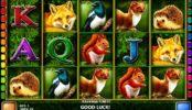 Bavarian Forest joc ca la aparate gratis online