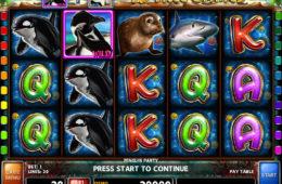 Joc de păcănele fără înregistrare Penguin Party