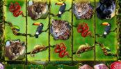 Secrets of the Amazon joc ca la aparate gratis