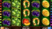 O imagine din joc de păcănele Wild Clover