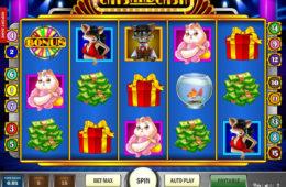 Изображение игрового автомата Cats and Cash