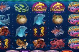 Играть Dolphin Quest бесплатно онлайн