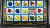 Бесплатный онлайн игровой автомат Fruit Cocktail 2