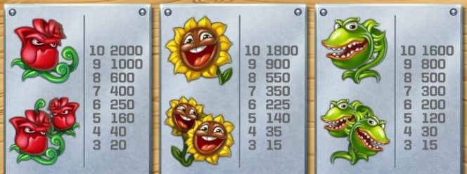 Paytable from casino free slot game Flowers