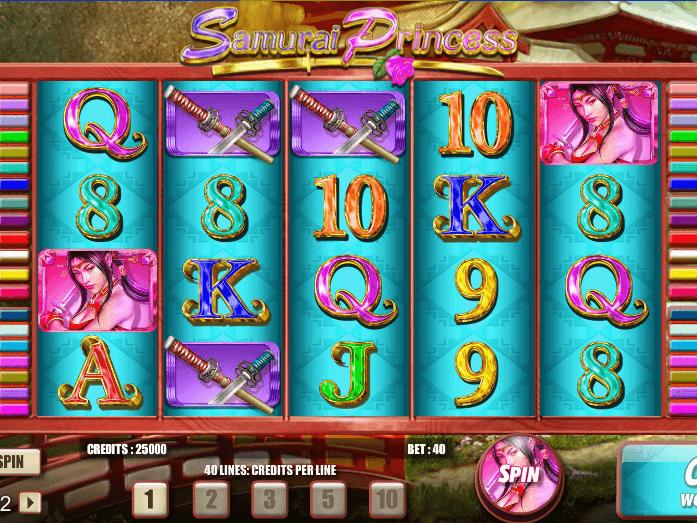 picture of slot Samurai Princess free online