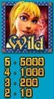Wild from Genie Wild casino slot machine online