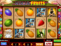 Online free slot Ninja Fruits