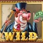 Wild symbol from online slot machine Piggy Riches no deposit
