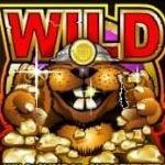 Simbol wild în jocul de cazino gratis online Gopher gold