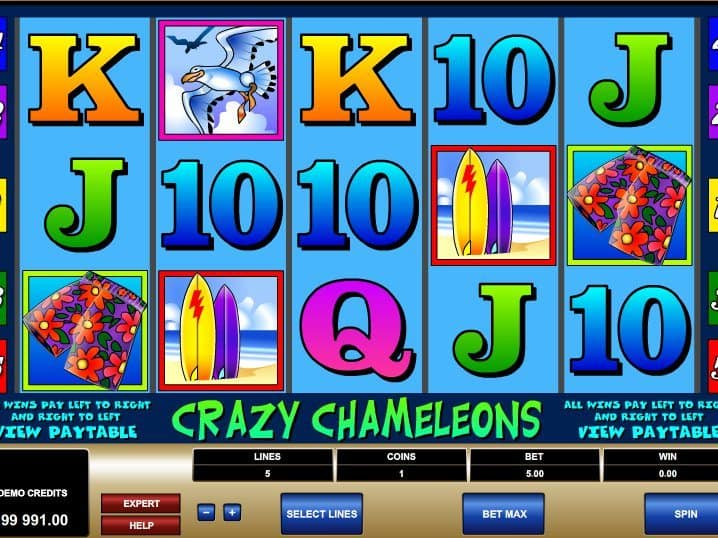 Casino game slot Crazy Chameleons free online