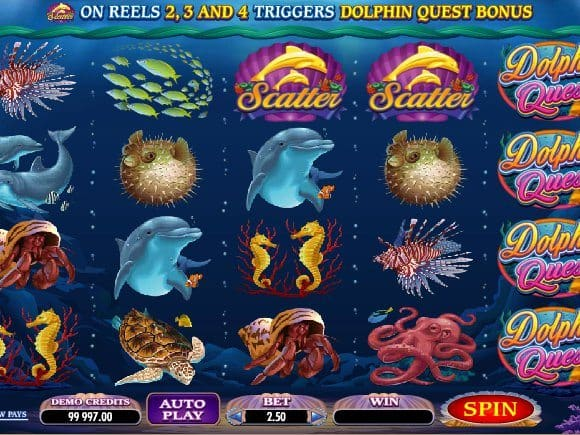 Slot Dolphin Quest free online