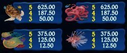 Free online casino slot Dolphin Quest
