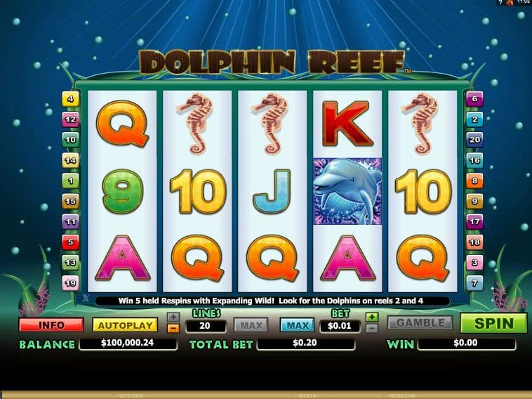 Slot Dolphin Reef online free