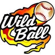 символ Wild Ball в онлайн слоте Hot Shot