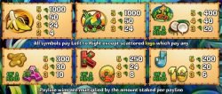 Free online slot Mad Mad Monkey for fun