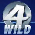 Fantastic four wild Symbol