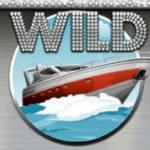 Simbolul wild în jocul cu aparate gratis Mega Fortune
