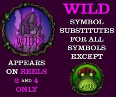 Online free slot Enchanted Woods - wild symbol