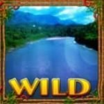 Wild symbol from online slot game Amazing Amazonia