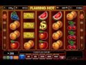 Slot for fun Flaming Hot online