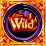 Wild symbol - online casino slot machine Dragon's Wild Fire