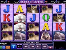 Picture from online slot game 100 Cats no deposit