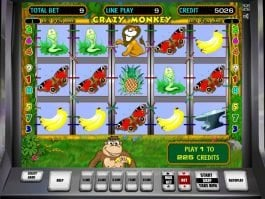 Casino game Crazy Monkey online