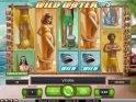 Play free slot machine Wild Water online