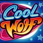Cool Worl - wild symbol