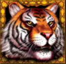 King Tiger online slot game free